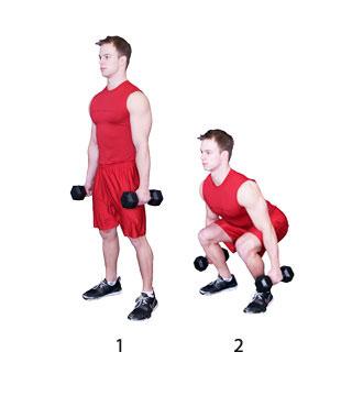 Beginner Squat Fitness Oefeningen Com